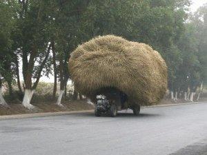 hay.  it\'s a load.